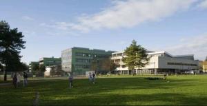 Chi College 2