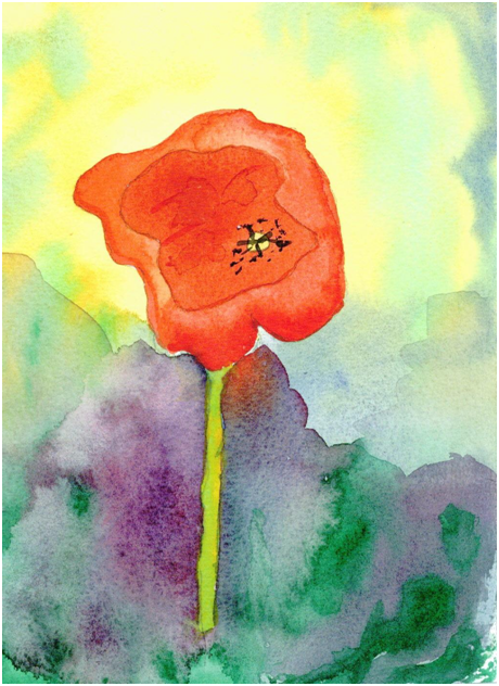 Poppy Painted by Luke McEwen Water colour