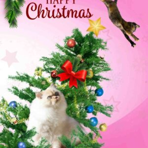 Mabel in the Tree – Christmas Card by Luke McEwen
